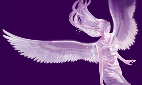angel_wings_vector_533048